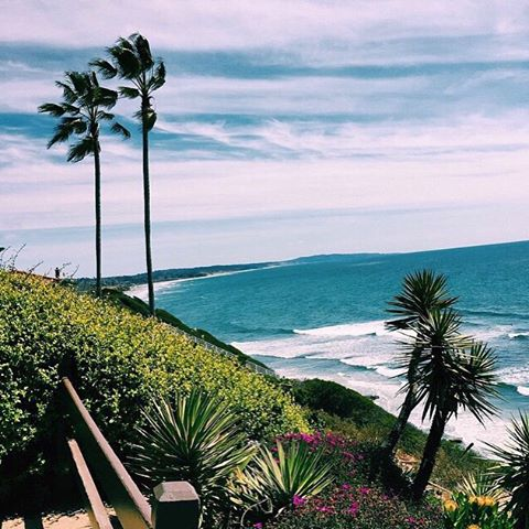 VIEWS LIKE THIS // Just one of the many reasons we LUV San Diego // @avabivins #luvsurf #home #views #seaside #escape