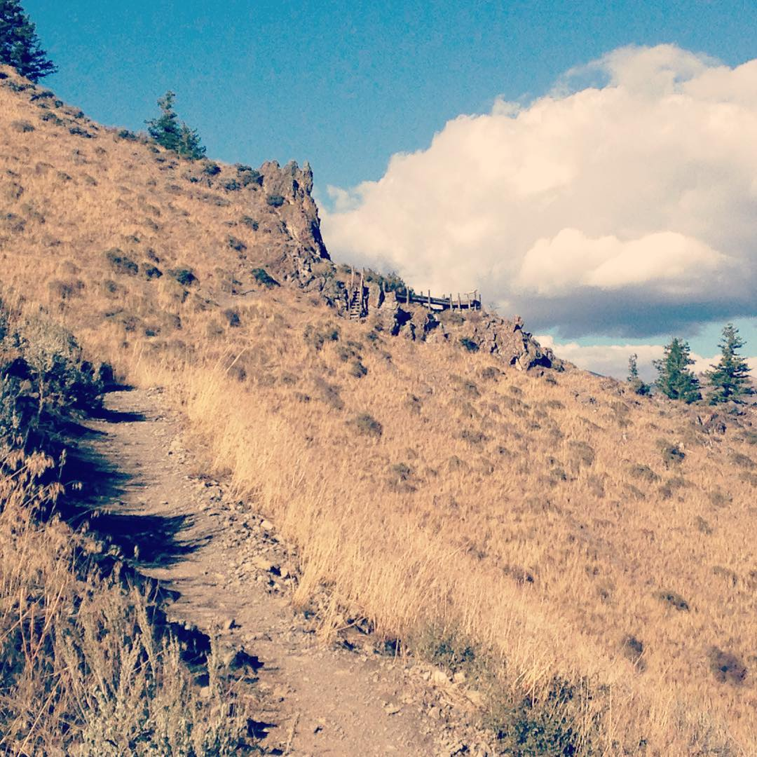 Hiking right outside of our office on #mtbaldy in #ketchum, #idaho! You can see a popular #lookout spot in the distance! #hiking #mountains #sunvalley #seeksunvalley #exploremore #getoutside #thegoodlife #nature