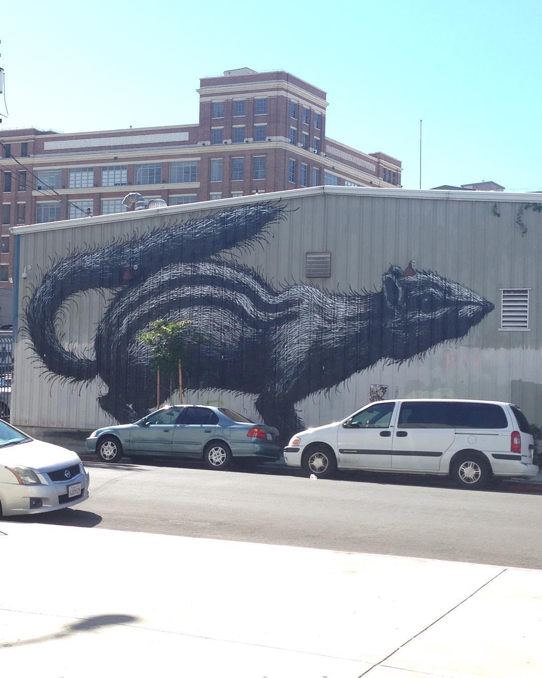 ROA #losangeles #LA • • #streetart #mural #roa #cali #california #artdistrict #spratx