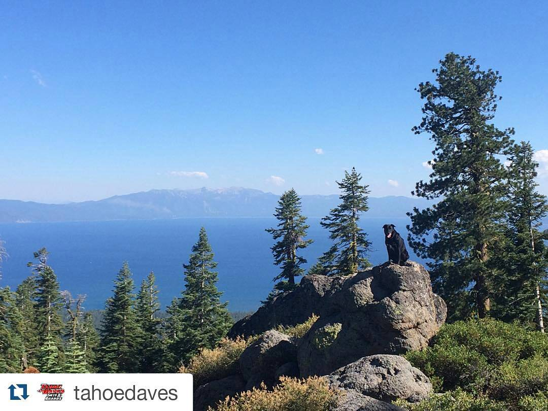 We love our perfect fall days in Tahoe!