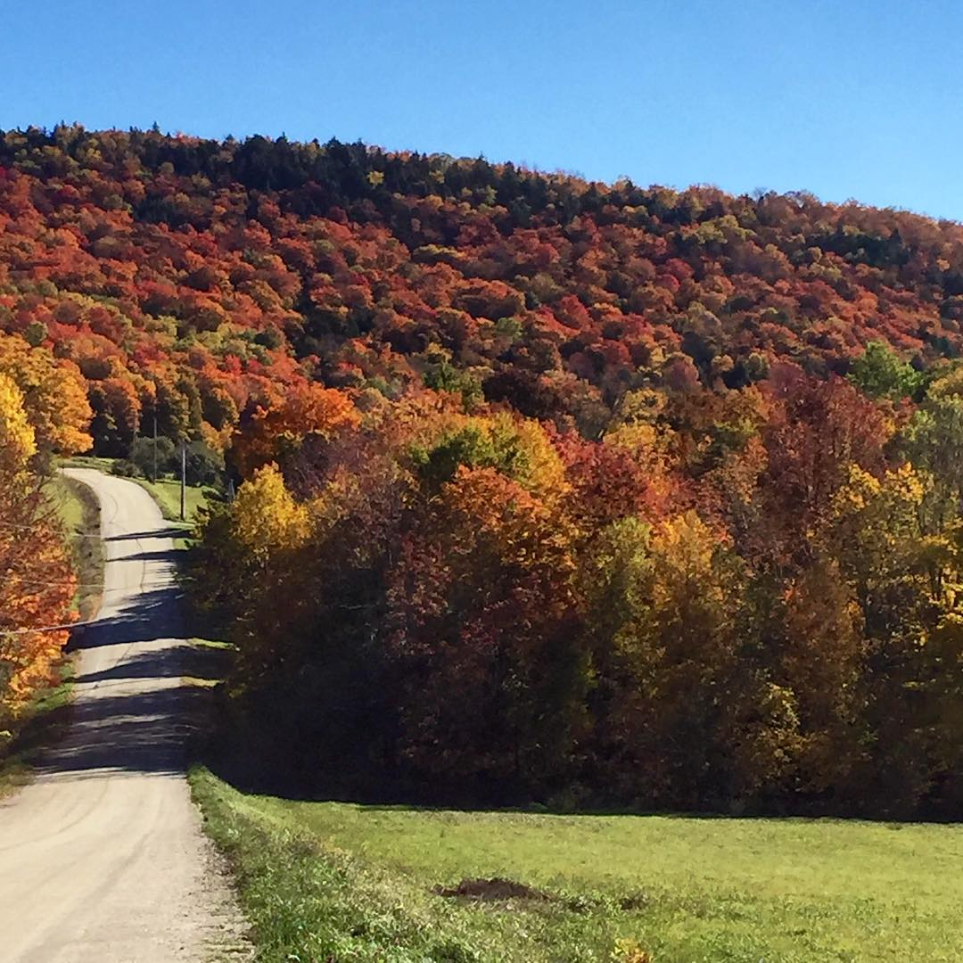 Follow the road that leads to a colorful life, #lifeonadirtroad #highfivesfoundationVT