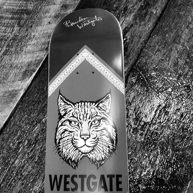 Thanks @elementbrand and @westgatebrandon for the signed deck! Dope! #element #promodel #brandonwestgate #signeddeck