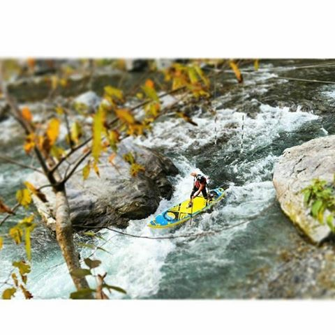 Morning runs with Yaku. #hala #suppaul #paddleboarding #japan #riversup  Photo: @suppaul_pics