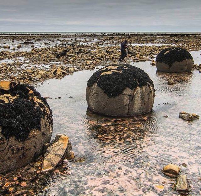 Algunos de los misterios de Peninsula Mitre sólo se revelan cuando baja la marea...#conservemos #peninsulamitre #tierradelfuego