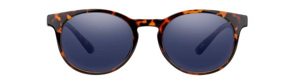 Sunglasses - Duckfeet Polarized // CLARK