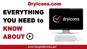 dryicons-com-founder-ceo-net-worth-review-alternative