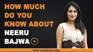 neeru-bajwa-age-birthday-biography-husband-net-worth