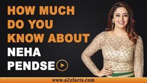neha-pendse-age-birthday-biography-husband-net-worth