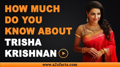 trisha-krishnan-age-birthday-biography-husband-net-worth