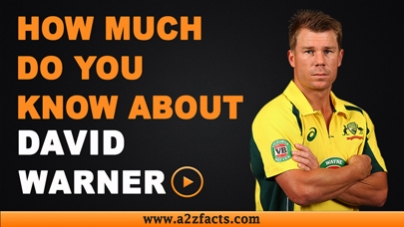 David Warner – Age, Birthday, Biography, Wife, Net Worth and More