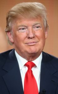 Trump - nice
