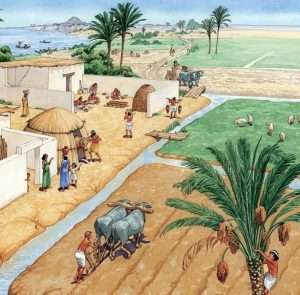 Early Agriculture
