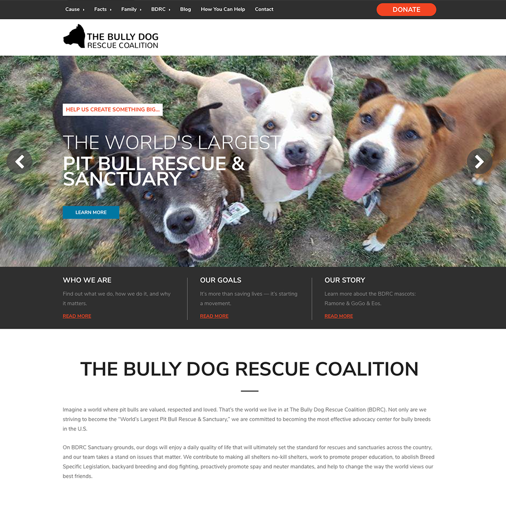 The Bully Dog Rescue Coalition - Aaron Bartholomew Development