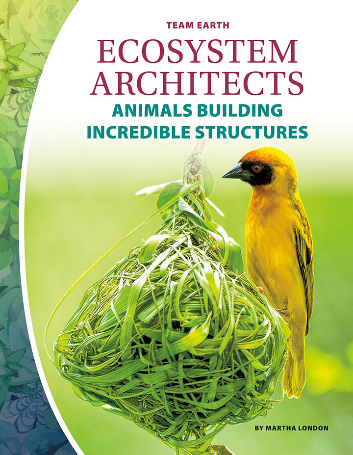 Ecosystem Architects: Animals Building Incredible Structures