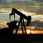 Image for U.S. Weighs Paying Drillers to Leave Oil in Ground Amid Glut