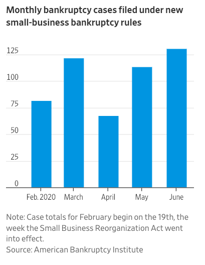 Visualization for Monthly Bankruptcy Cases Filed under SBRA