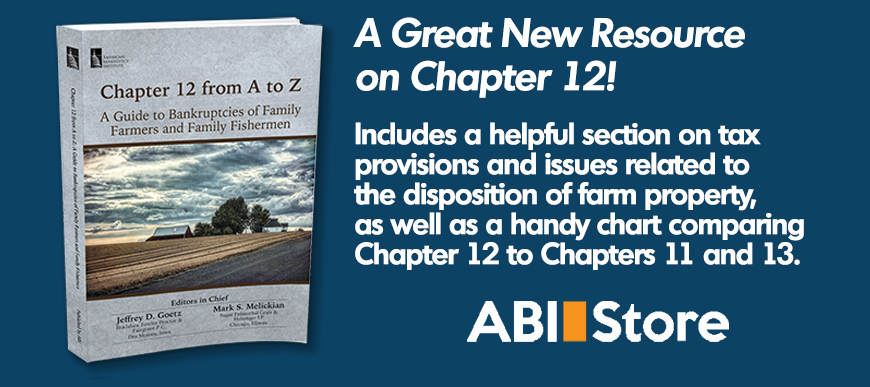Pre-Bankruptcy Planning for the Commercial Reorganization