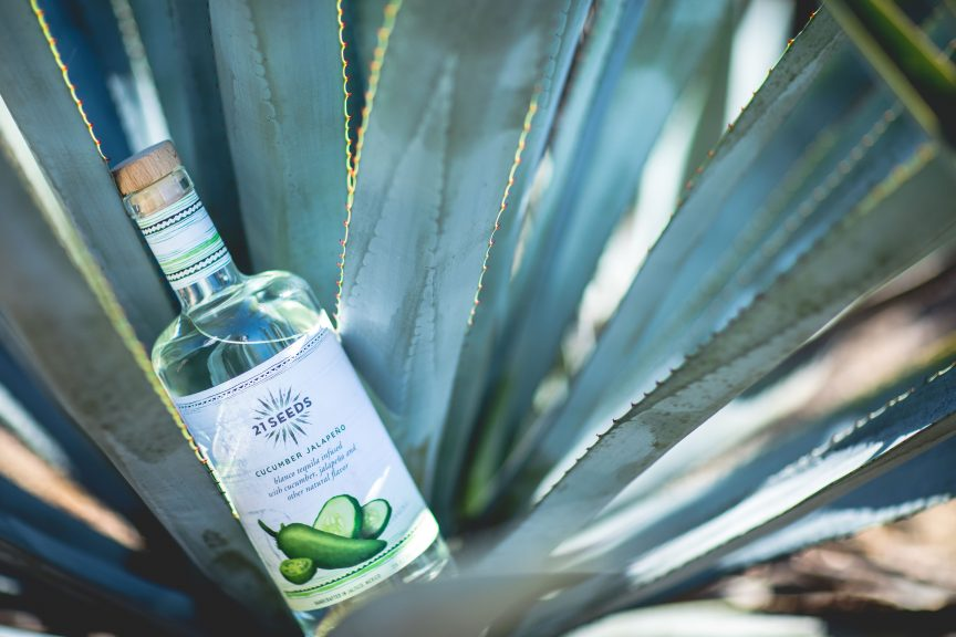 21 Seeds bottle in agave plant.
