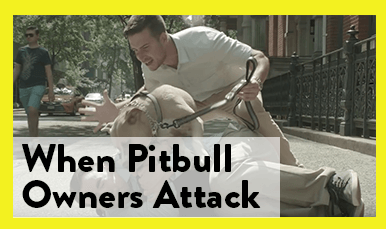 Pitbull-Owners-Attack