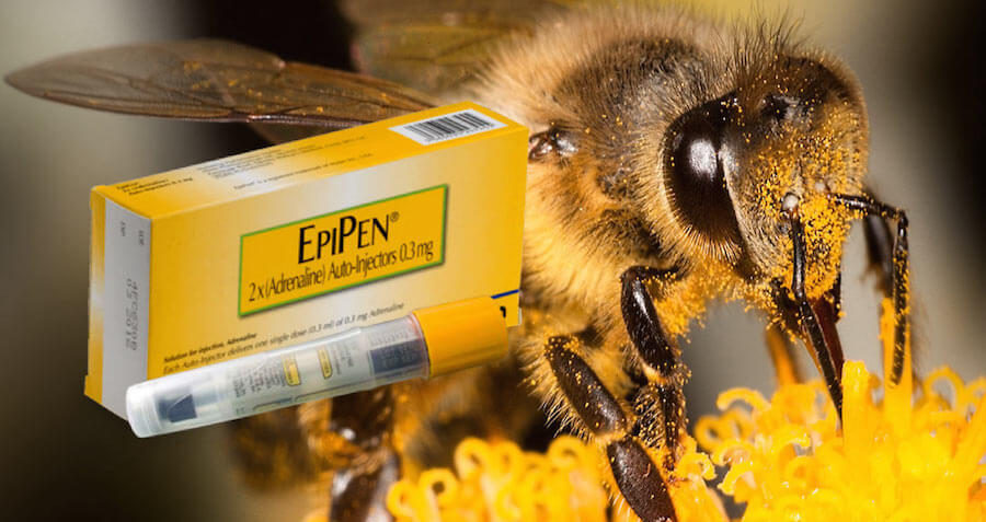 Don't Worry About EpiPen Costs, All The Bees Will Be Dead Soon