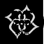 rys-logo