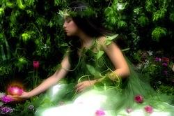 enchanted-garden-250px