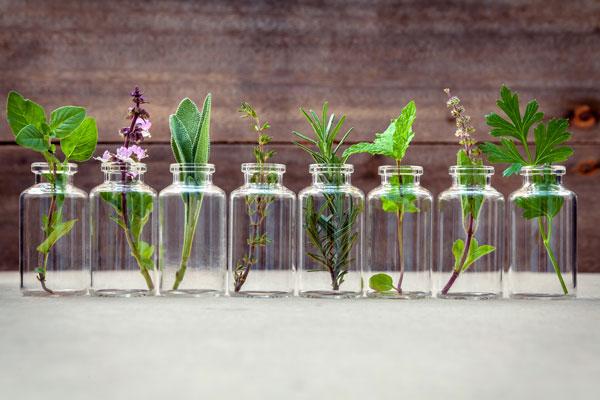 bottles with botanical essences, essential oils