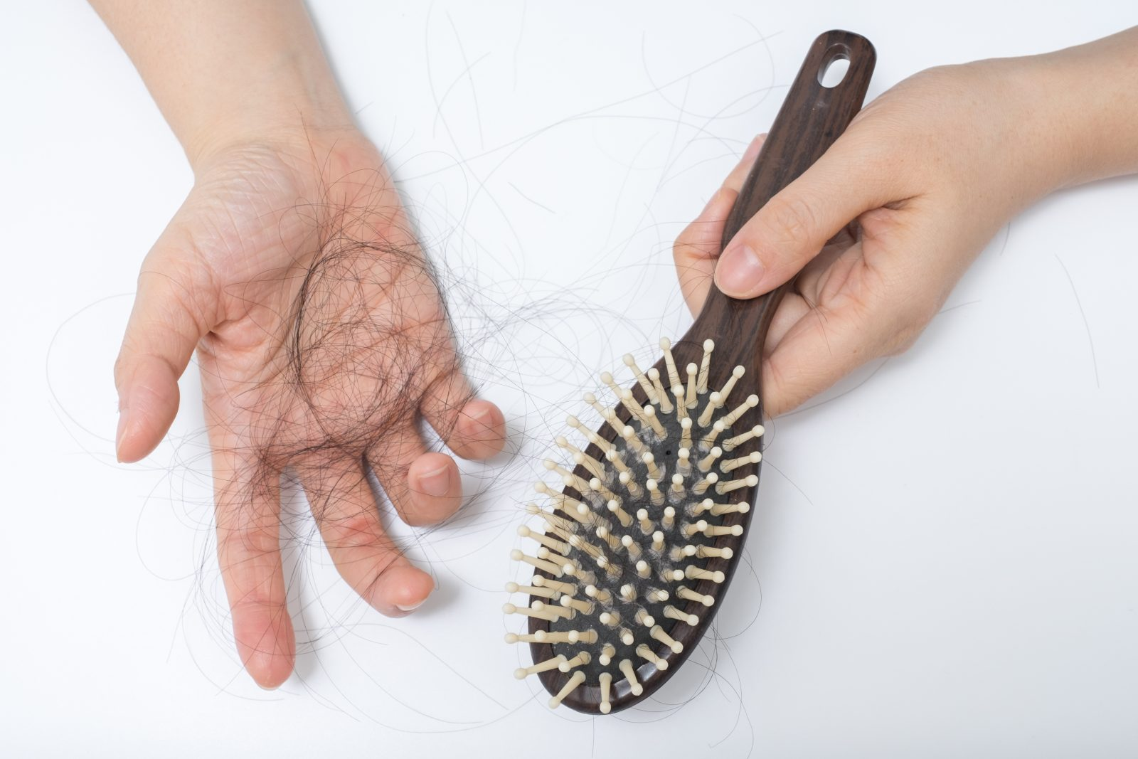 Hair loss in woman hands and loose hair strands in a hair brush.