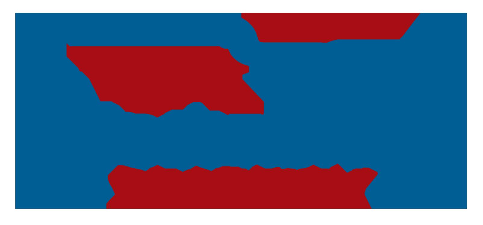 Revolutionary Security LLC logo