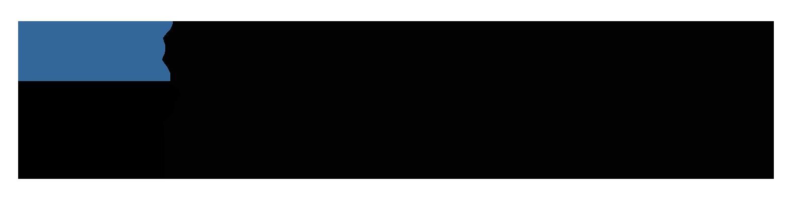 Sonatype, Inc.  logo