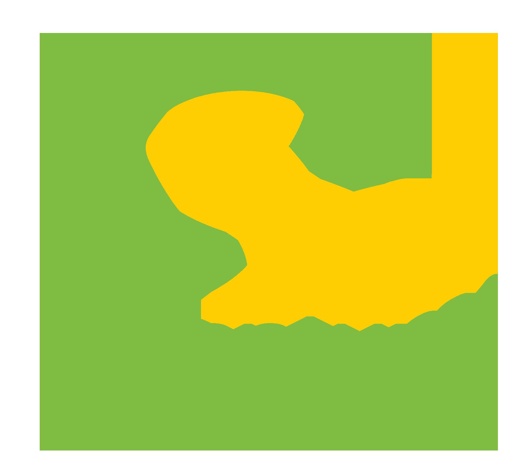 Quantum Health logo