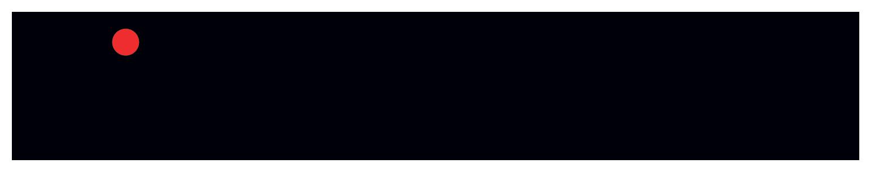 Panaseer logo