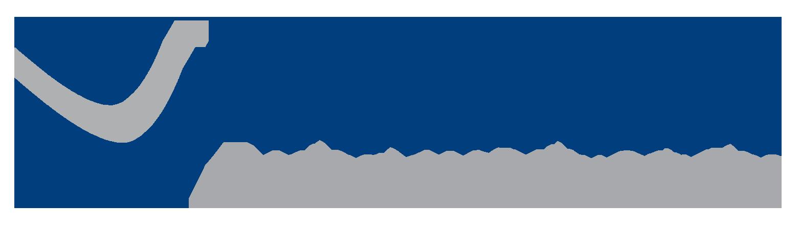 Vision Wireless logo