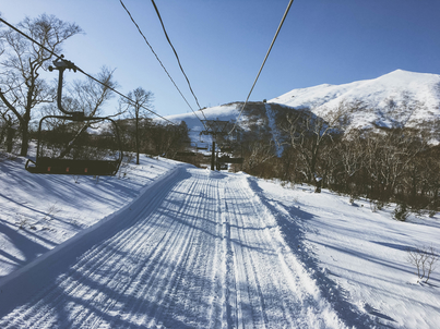 Image for blog article: Niseko et sa poudreuse - The Magic Powder of Niseko