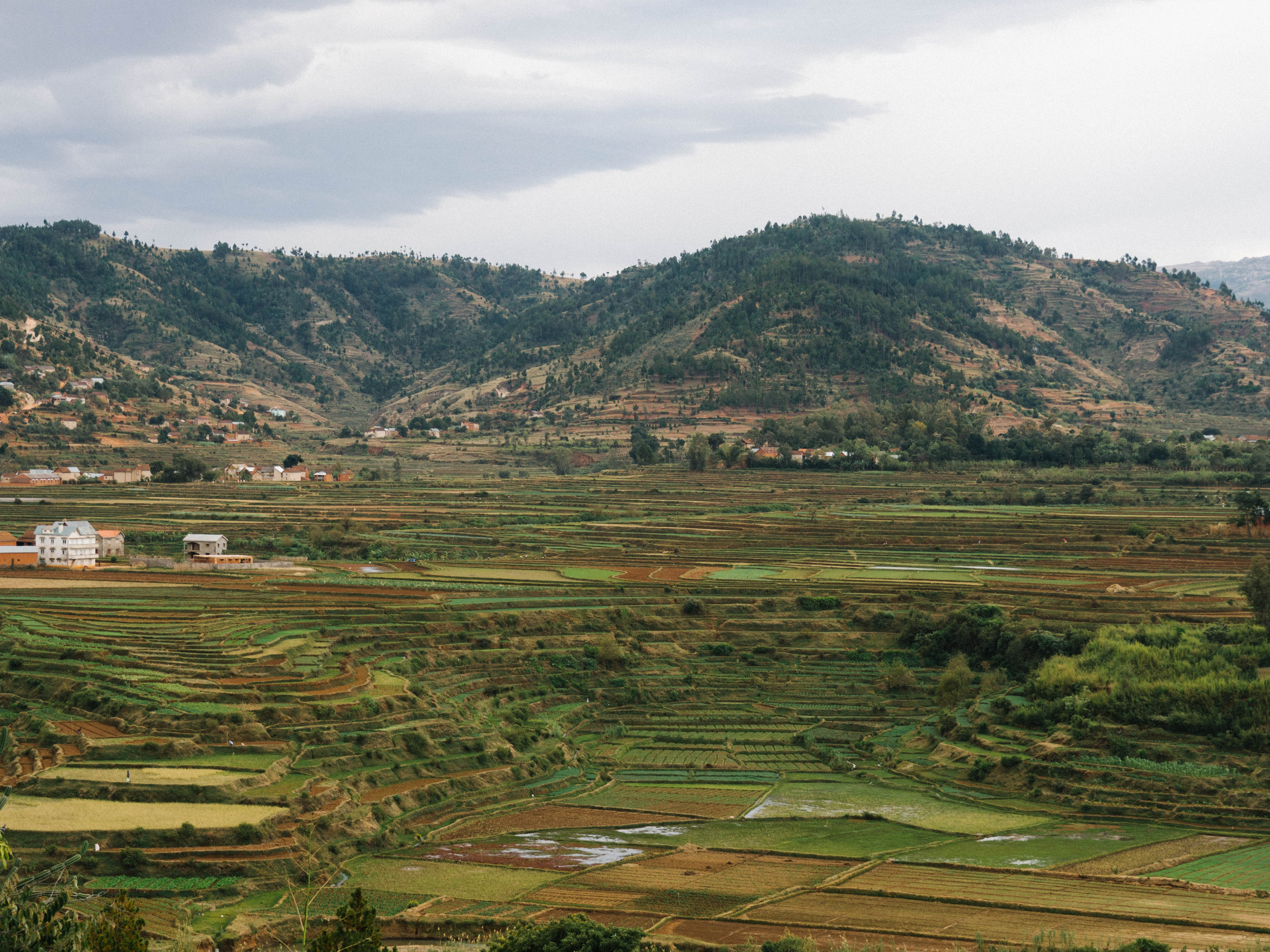 Image for blog article: Antsirabe- Madagascar