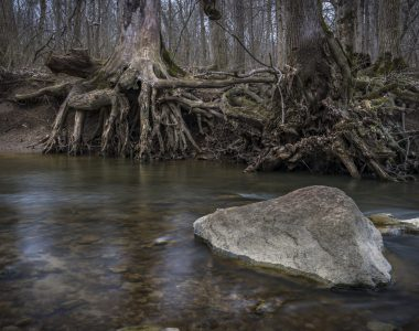 Hurb and Francis Fuller Woods honors family, Renews Hoosier History of the Land