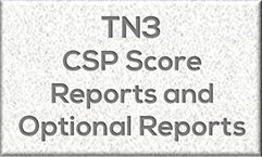 CSP Score Reports and Optional Reports