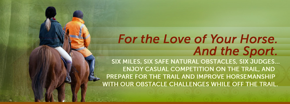 For the Love of Your Horse and Sport