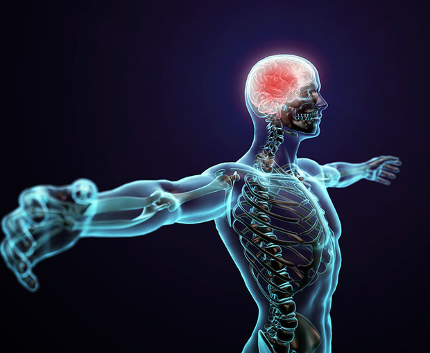 Can Physiotherapy Train Your Brain?