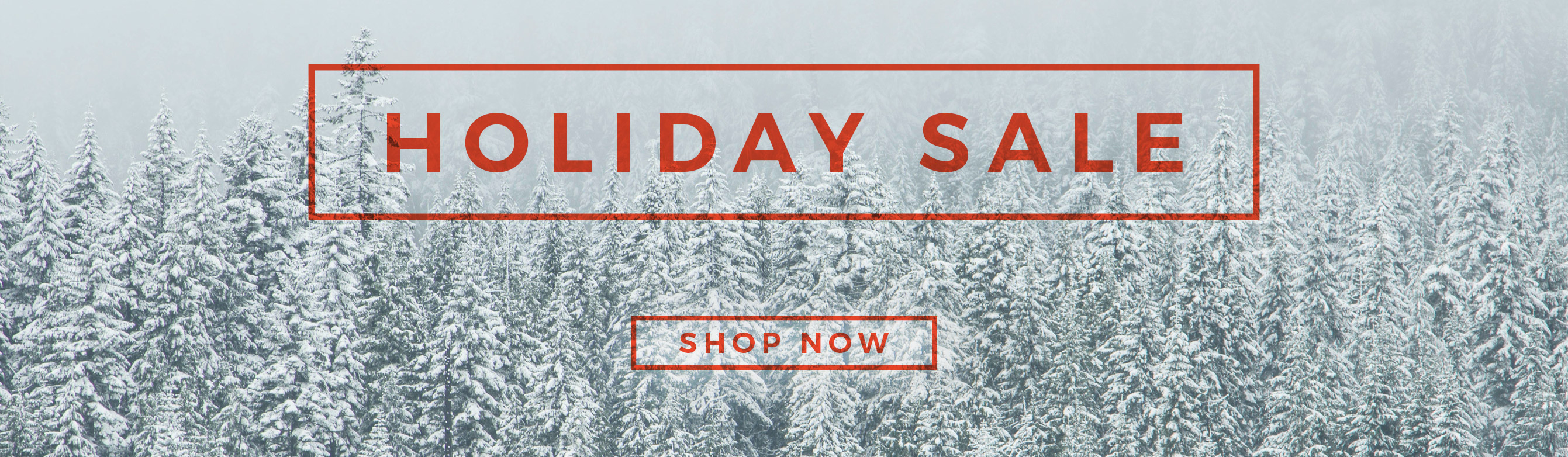 Active Junky Holiday Sale