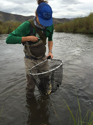 Orvis encounter waders and access wading boots review for Fly fishing waders reviews