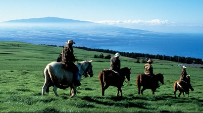 Product Napili Sunset Horseback Ride