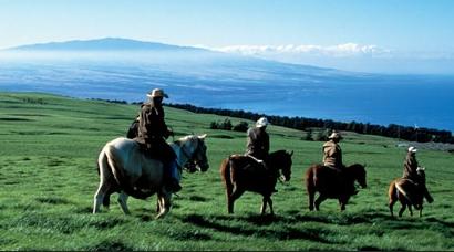 Product Napili Sunset Horseback Ride