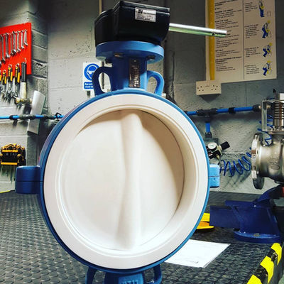 TTV Full PTFE Lined Butterfly Valves.jpg