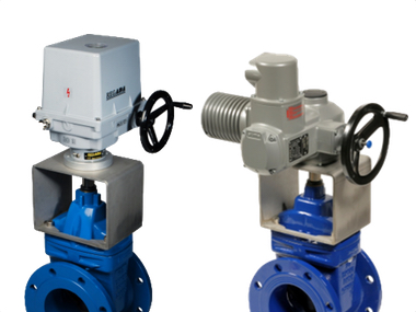 Actuated Gate Valves.jpg