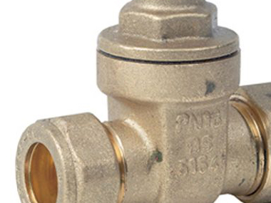 Brass Compression Ends Gate Valves.jpg