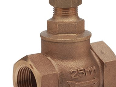 Bronze Screwed Globe Valves.jpg