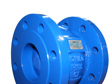 Cast Iron Axial Disc Check Valves.jpg