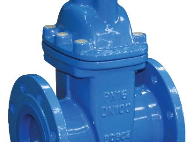 Cast Iron Flanged Gate Valves.jpg