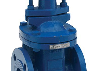 Ductile Iron Flanged Gate Valves.jpg